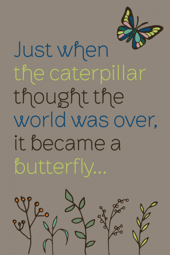 Just When the Caterpillar Thought the World Was Over Proverb Quote glutenfreesage 640 x 960 wallpaper