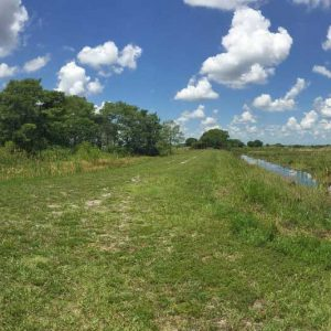 hiking loxahatchee before west indian curried shrimp recipe